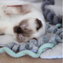 Filzspirale Katzenspielzeug...