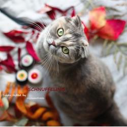 cat toys felt power 06 saffron
