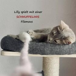 felt mouse SET cat toy