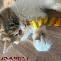 felted cat toy S1 -...